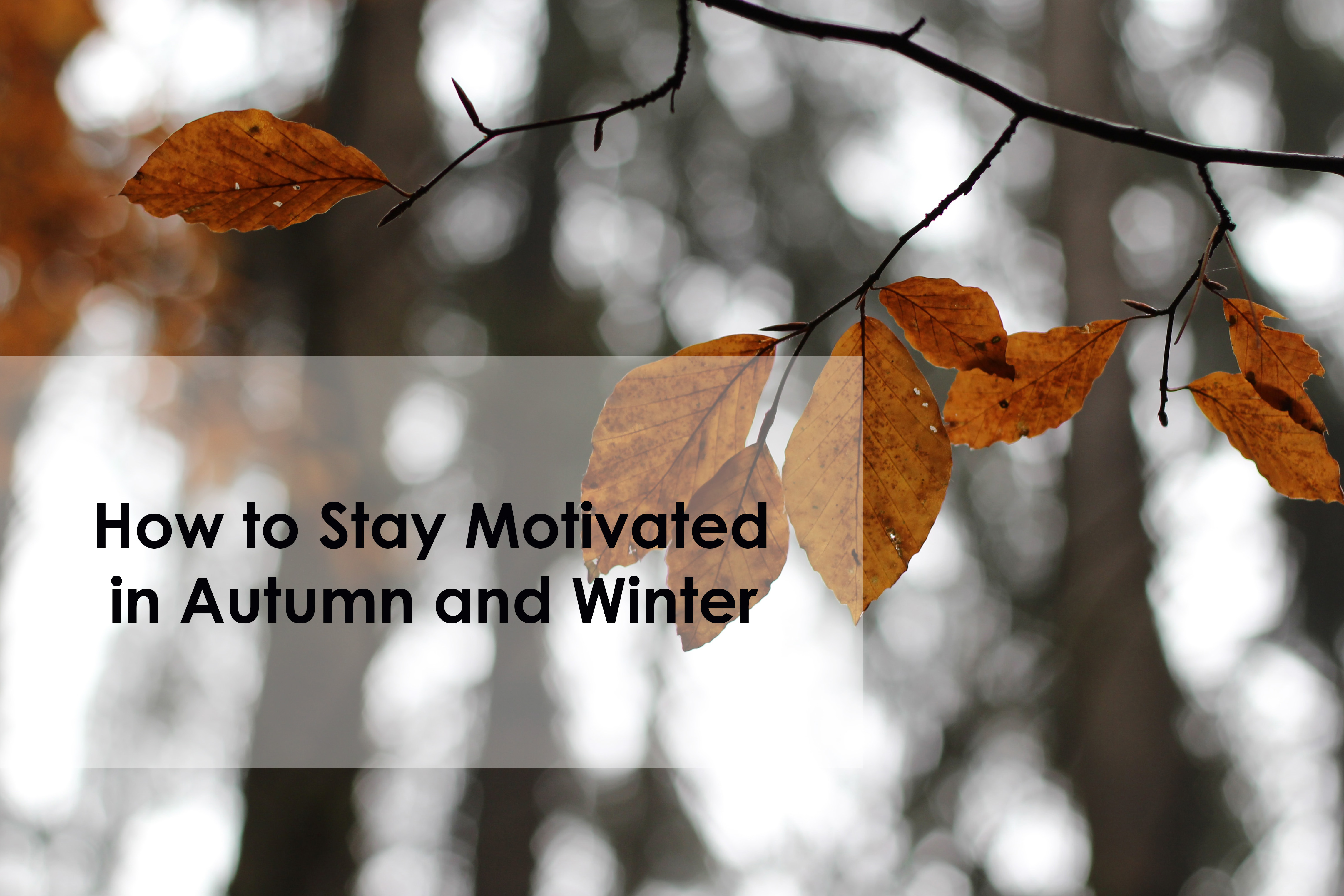 How to Stay Motivated in Autumn and Winter